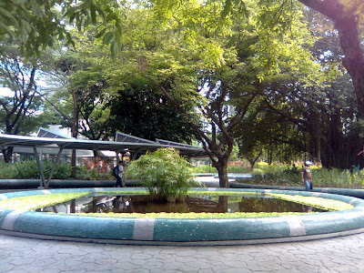 Garden at MSE side