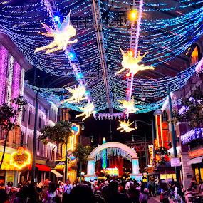 Universal Studios by Riddhima Chandra - City,  Street & Park  Amusement Parks ( singapore, universal studios, nightscape, christmas, lights,  )
