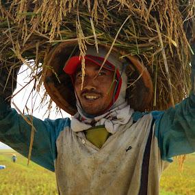 Happy Indonesian Farmer by Rizaldy Rizkie - People Portraits of Men ( farmer, portrait, indonesia, people, smile,  )