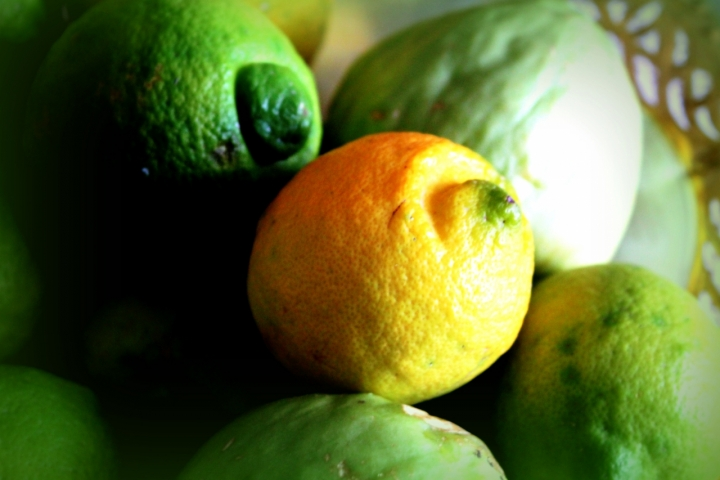 Profumo di limoni di mc.indaimo