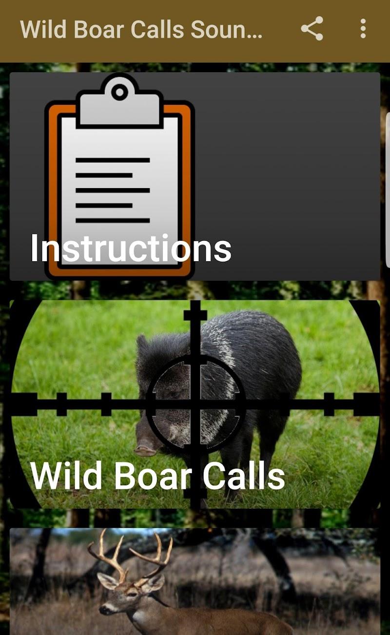 Скриншот Охота на диких кабанов