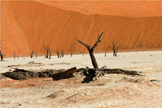 Photo: Deadvlei