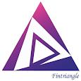 Fintriangle icon