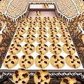 Cookie Dozer download