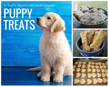 17 Puppy Treats For Your Best Friend Recipe