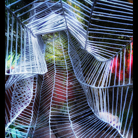 Patterns and colour by Morris Fremar - Abstract Light Painting