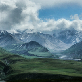 Artistic Challenge ~ Day 2I was nominated by Gayle Hall Winslow for an Artistic Challenge. The challenge involves posting one artistic photo for five days and challenging other artists to participateThis image was taken in Denali National Park, AK.  I can't wait to go back!!I nominate Brian Berchtold and Betty Wist.  Good luck!! by Tracy Riedel-Dorsch - Landscapes Mountains & Hills
