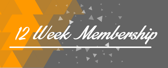 BWW 12 Week Membership