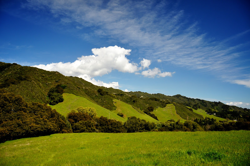 Photo: Awesome Day For Hiking At Las Trampas Regional Wilderness In San Ramon
