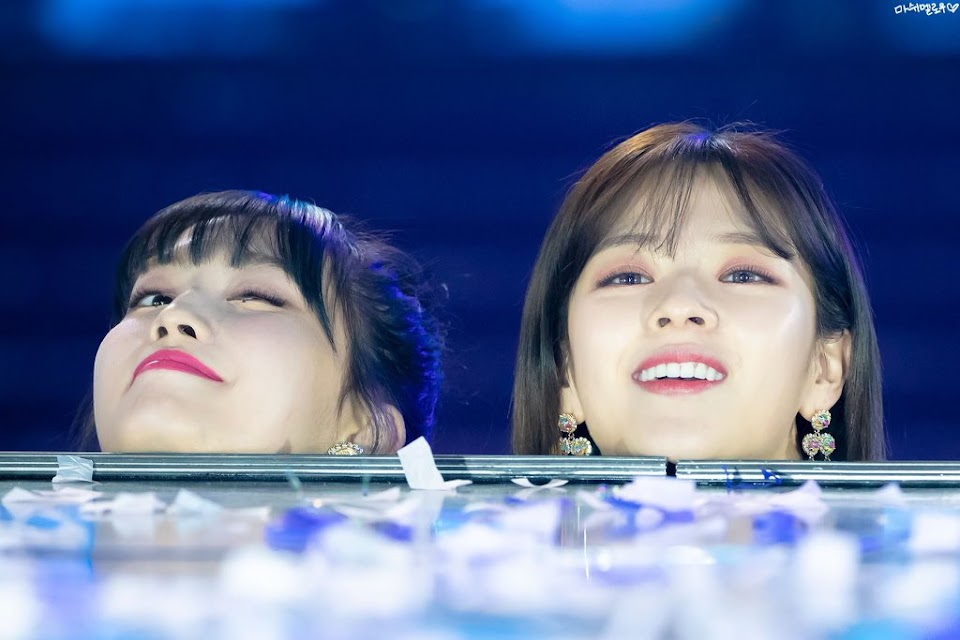 twice momo jeongyeon