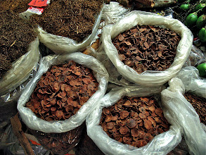 Photo: dried areca nut and tobacco, Khorat market
