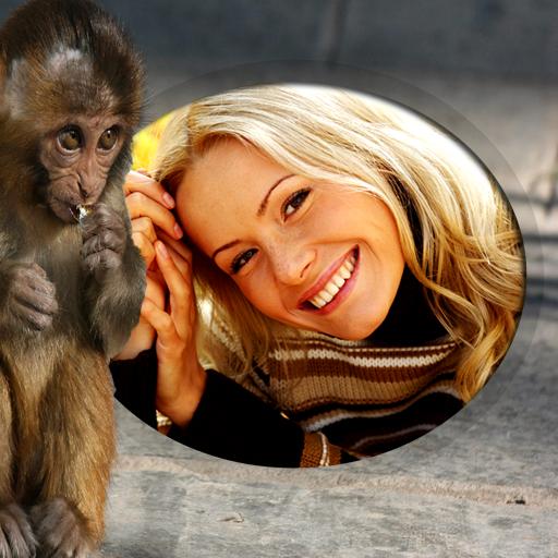摄影のおかしい猿のフォトフレーム LOGO-記事Game