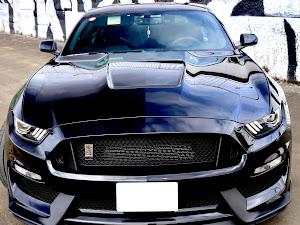 シェルビー GT350 のカスタム事例画像 Black Cobraさんの2020年02月16日10:43の投稿