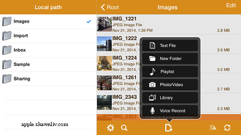 Free Wireless Flash Drive App download