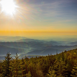 On top of Mt. Mitchell by Teresa Solesbee - Landscapes Mountains & Hills ( sunrise mountains summit view, sunrise, sunrise mountains )