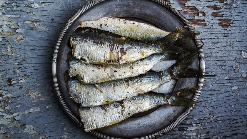 La sardina, un alimento con alto contenido en Omega 3