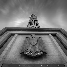 Cairo tower  by Mahmoud Zahby - Black & White Buildings & Architecture ( art, buildings, hdr, cairo, black and white, architecture, tower )