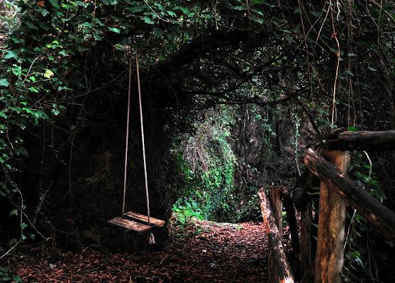 L'altalena nel bosco di Mikmata
