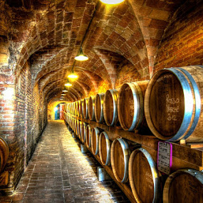 oak barrels by Frans Scherpenisse - Buildings & Architecture Other Interior ( wine, cellar, hdr, wood, oak, drink, brown, barrel, italy )