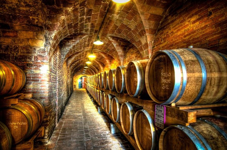 oak barrels by Frans Scherpenisse - Buildings & Architecture Other Interior ( wine, cellar, hdr, wood, oak, drink, brown, barrel, italy )