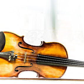 violino by Kiril Kolev - Artistic Objects Musical Instruments ( studio, violins, old, classical, violin, musical instruments )