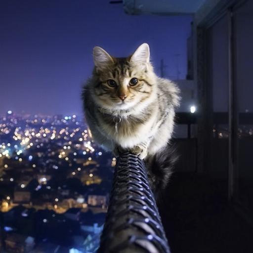 Cat part 1