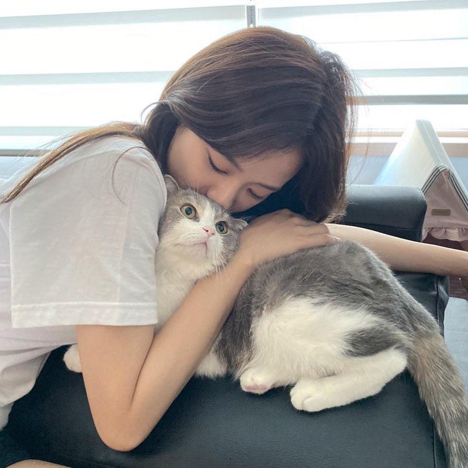 jisoo cat