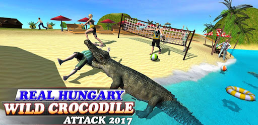 Real Hungary Wild Crocodile Attack 2017