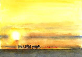 Photo: Mali Camels