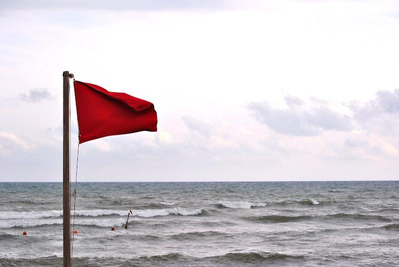 no swimming di Mattia Scalice