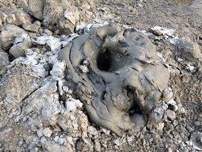 Photo: Devil's Woodyard mud volcanoe