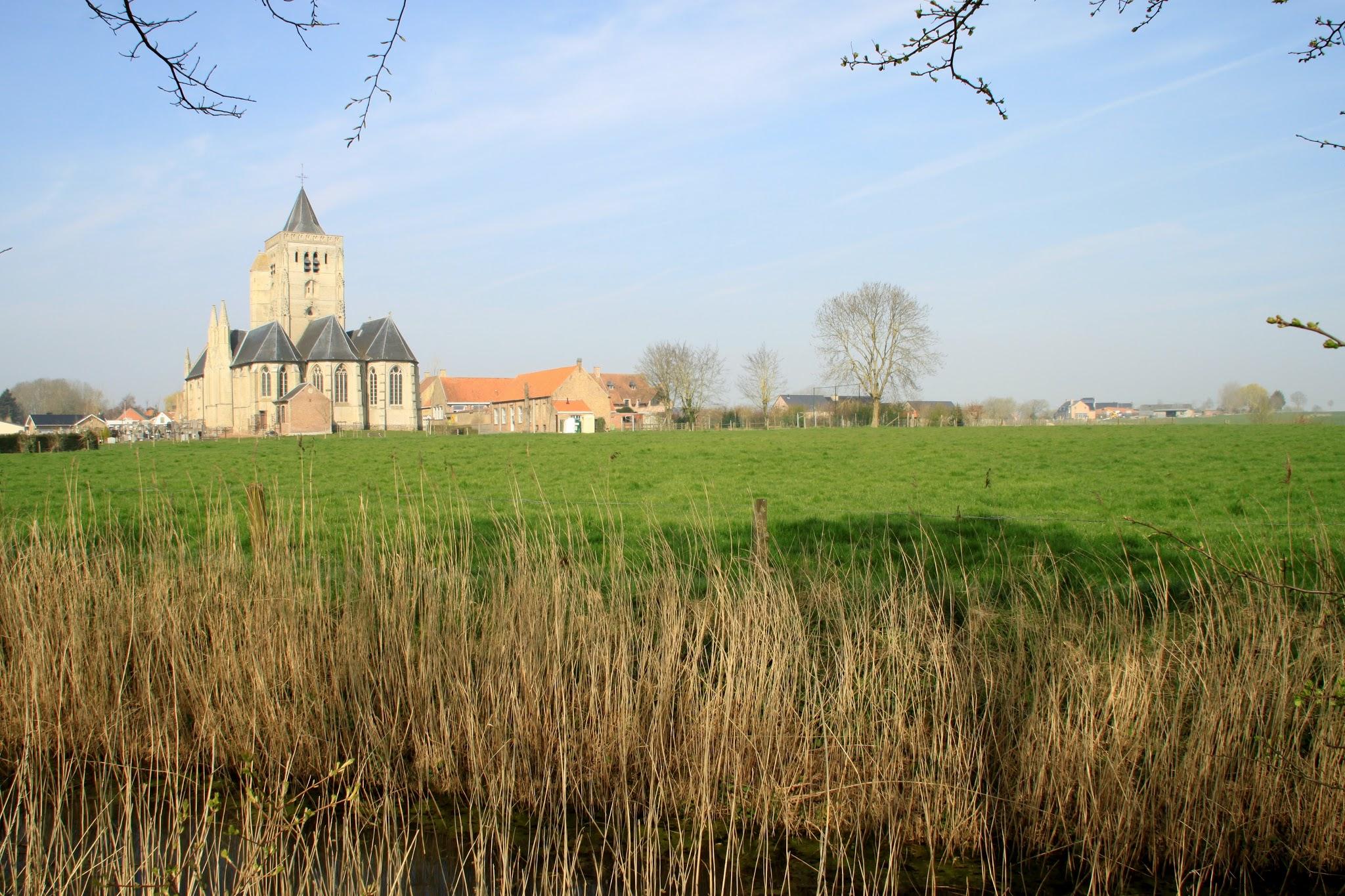 Photo: De Sint-Audomaruskerk van Beveren, een gotische hallenkerk uit de 15de eeuw.