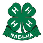 NAE4-HA Annual Conference