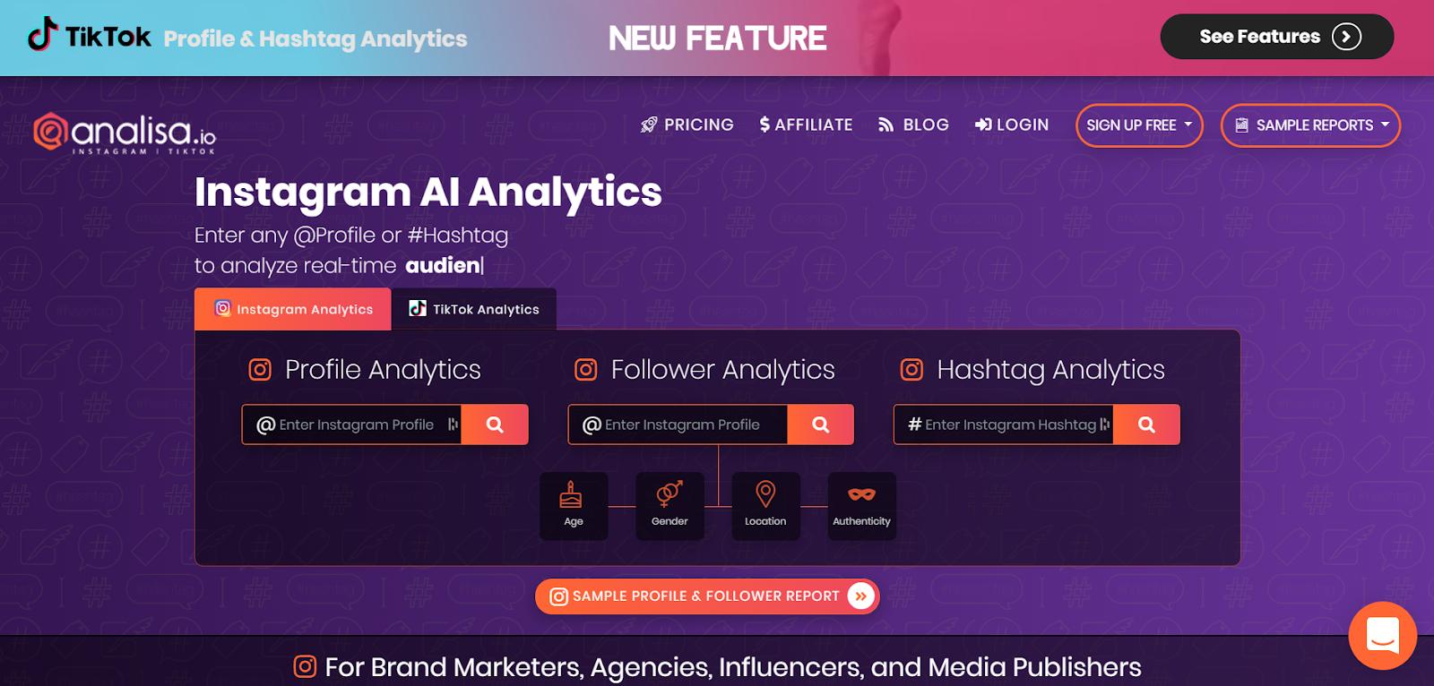 social media marketing tools for Instagram and TikTok