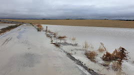 Las consecuencias del temporal en Vélez-Blanco.