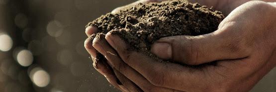Curso de Fertilização em Modo Biológico – 8 DEZ 2020 – Teórico e Prático 8h