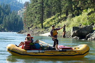 Photo: River guide holds up a chinook salmon while whitewater rafting on the Main Salmon River in central Idaho.