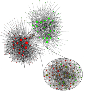 Social Networks and Collective Human Behavior 2