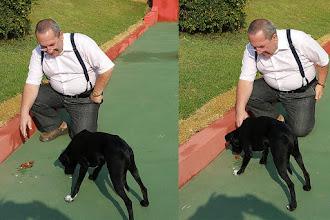 Photo: Encontrei com este cachorrinho quando fui tomar um café no Rancho da Pamonha na Rodovia dos Bandeirantes próximo a São Paulo. Extremamente arisco, não consegui pegá-lo pois ele rosnava e recuava. Apenas foi possível dar uns salgadinhos. Nem água ele tomou: comeu e saiu correndo. Vou voltar lá outras vezes para ver se ele se acostuma comigo.