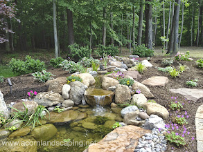 Photo: Garden Pond Rochester NY, Waterfall Pond, Ecosystem Fish Pond, Koi Pond, Landscape Pond, Pond Designer, Pond Contractor, Pond Service, Pond Maintenance, Pond Installer, Pond Builder, Pond Design by Acorn Ponds & Waterfalls Certified Aquascape Contractor since 2004.  Visit our website www.acornponds.com and please give us a call 585.442.6373.  Check out this amazing Outdoor Room by Acorn Ponds & Waterfalls, Certified Aquascape Contractor, Pond Designer, #LandscapeDesigner of Rochester NY,.This Backyard Outdoor Room included a Techo-Bloc Paver Patio, Steps and Walkway, LED Landscape Lighting, Low Maintenance Plantings, Aquascape #GardenPond, Stream and #Waterfalls.  To learn more about Walter & Anna's incredible Backyard Transformation please click here: www.facebook.com/notes/acorn-landscaping-landscape-designlightingbackyard-water-gardens/landscaping-design-greece-ny-paver-patio-backyard-fish-pond-steps-led-lighting-i/386736208030174  Certified Aquascape Contractor of Rochester NY. Service areas include Rochester NY, Webster NY, Greece NY, Brighton NY, Pittsford NY, Penfield NY, Fairport NY, Irondequoit NY, Victor NY Rush NY, Henrietta NY.  To learn more about Acorn Ponds & Waterfalls Services, please click here: www.acornponds.com/services.html  Check out our photo albums on Pinterest here: www.pinterest.com/acornlandscape/  Click here for a free Magazine all about Ponds and Water Features: http://flip.it/gsrNN  To see more of our #pondinstallations on Facebook click here: www.facebook.com/media/set/?set=a.464911070212687.94604.103109283059536&type=3  Sign up for your personal design consultation here: www.acornponds.com/contact-us.html  Acorn Ponds & Waterfalls  585.442.6373 www.acornponds.com
