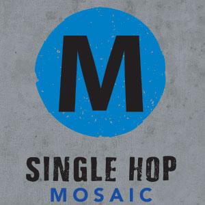 Logo of Hermitage Mosaic