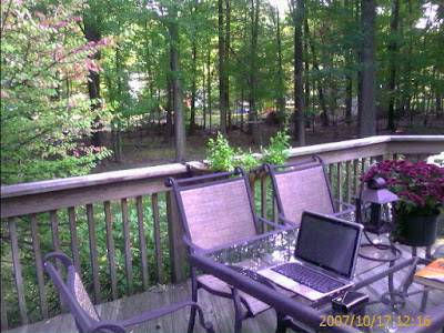 The Back Yard Office