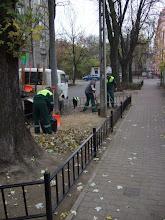 Photo: trawniki Grajewska, stan XI/XII 2008