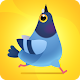 Pigeon Pop for PC-Windows 7,8,10 and Mac