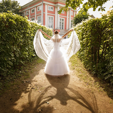Wedding photographer Tatyana Shmeleva (Wmelek). Photo of 05.09.2017