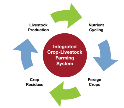 C:\Users\joe\Desktop\integrated farming.png