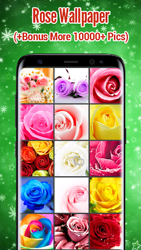 Rose Wallpaper  screenshots 9