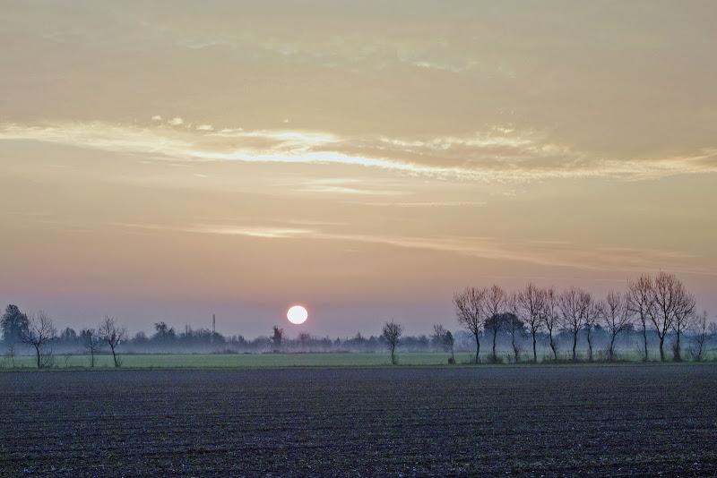 Good morning Sun di Fabrizio Franceschi