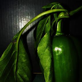 by Lauren McGuirt - Food & Drink Ingredients