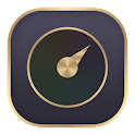 Business Gold Theme icon